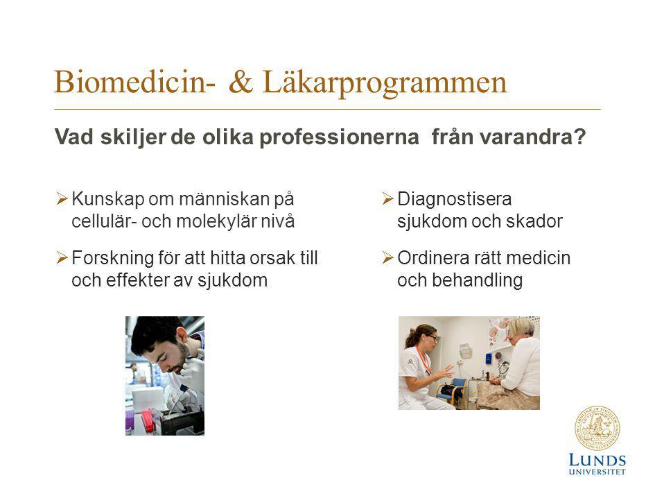 Biomedicin- & Läkarprogrammen