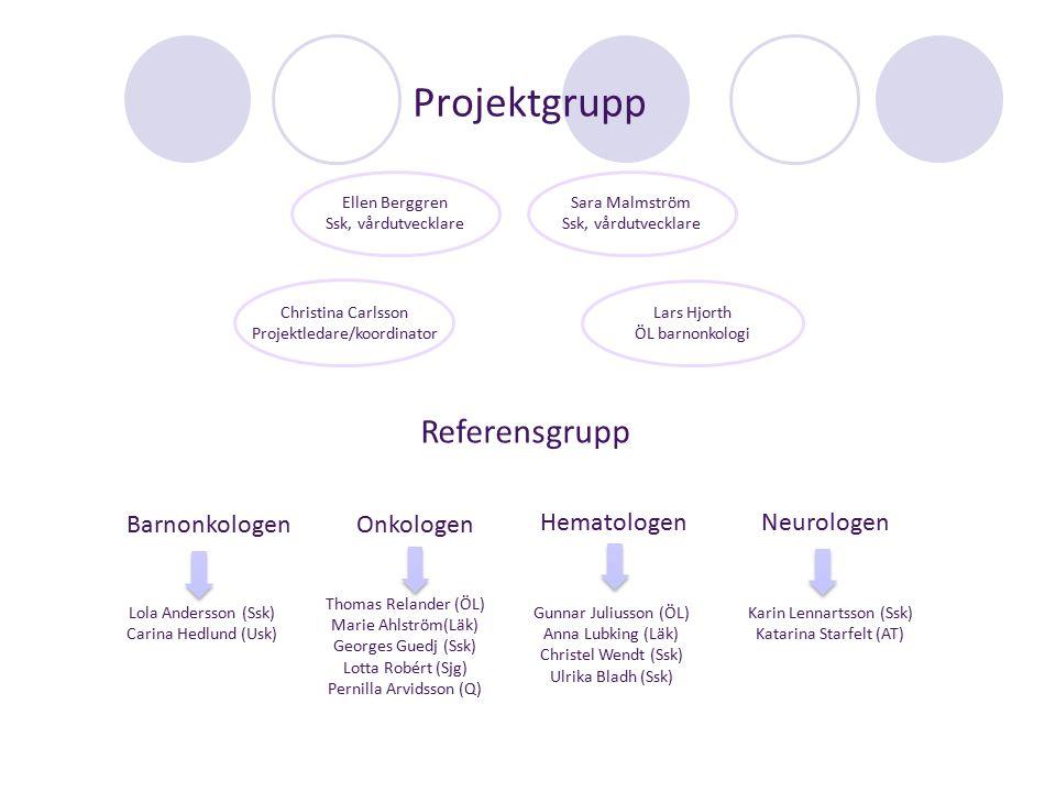 Projektgrupp Referensgrupp Barnonkologen Onkologen Hematologen