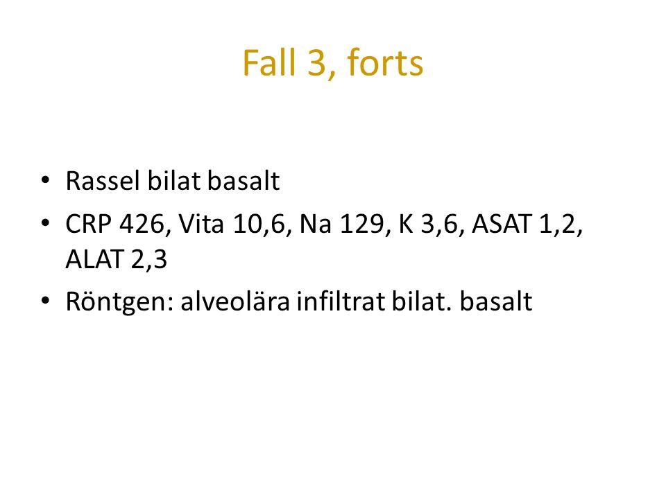 Fall 3, forts Rassel bilat basalt