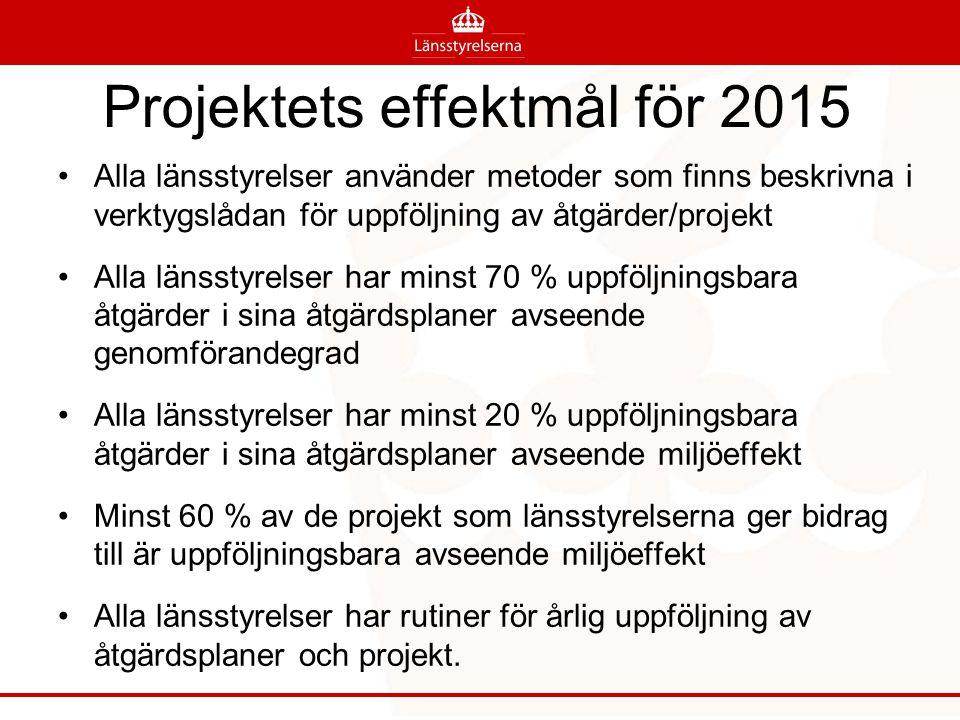 Projektets effektmål för 2015