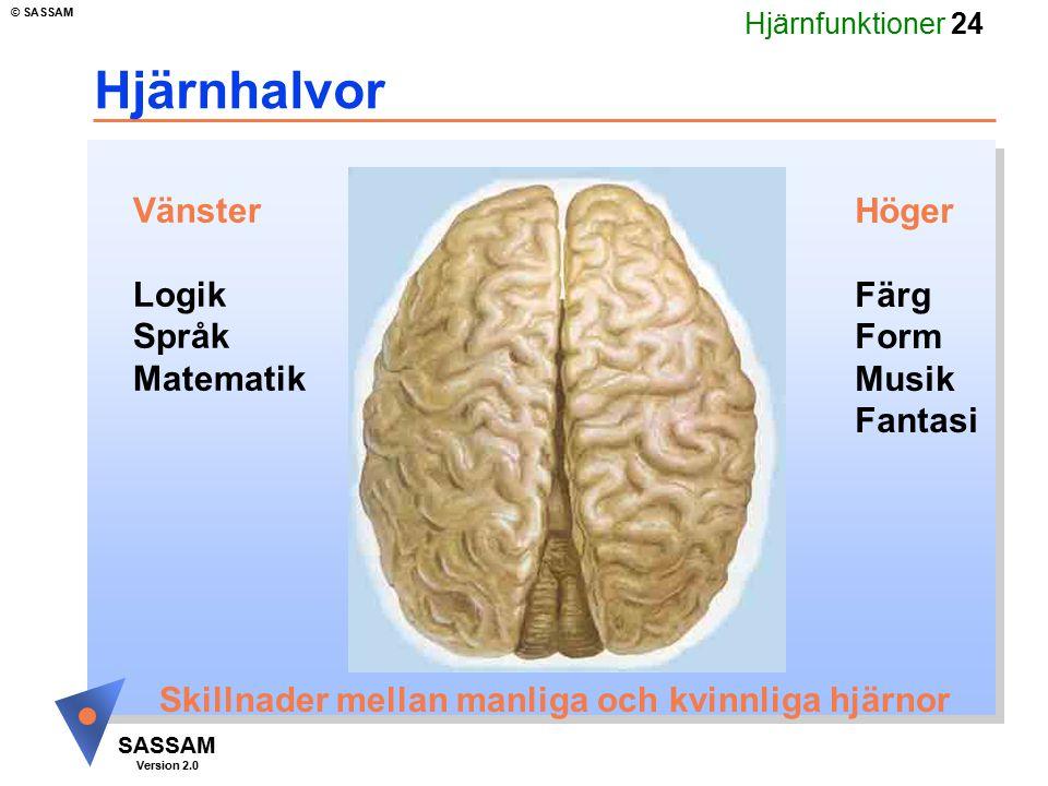 Hjärnhalvor Vänster Logik Språk Matematik Höger Färg Form Musik