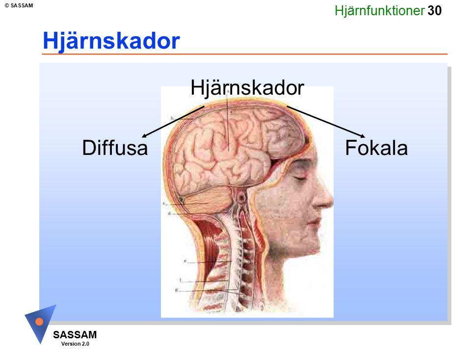 Hjärnskador Hjärnskador Diffusa Fokala Kommentar bild 40: