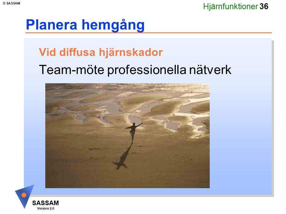 Planera hemgång Team-möte professionella nätverk