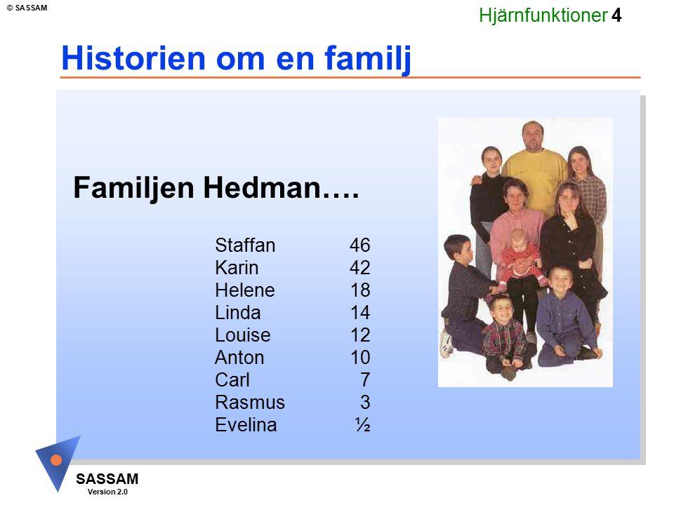 Historien om en familj Familjen Hedman…. Staffan 46 Karin 42 Helene 18