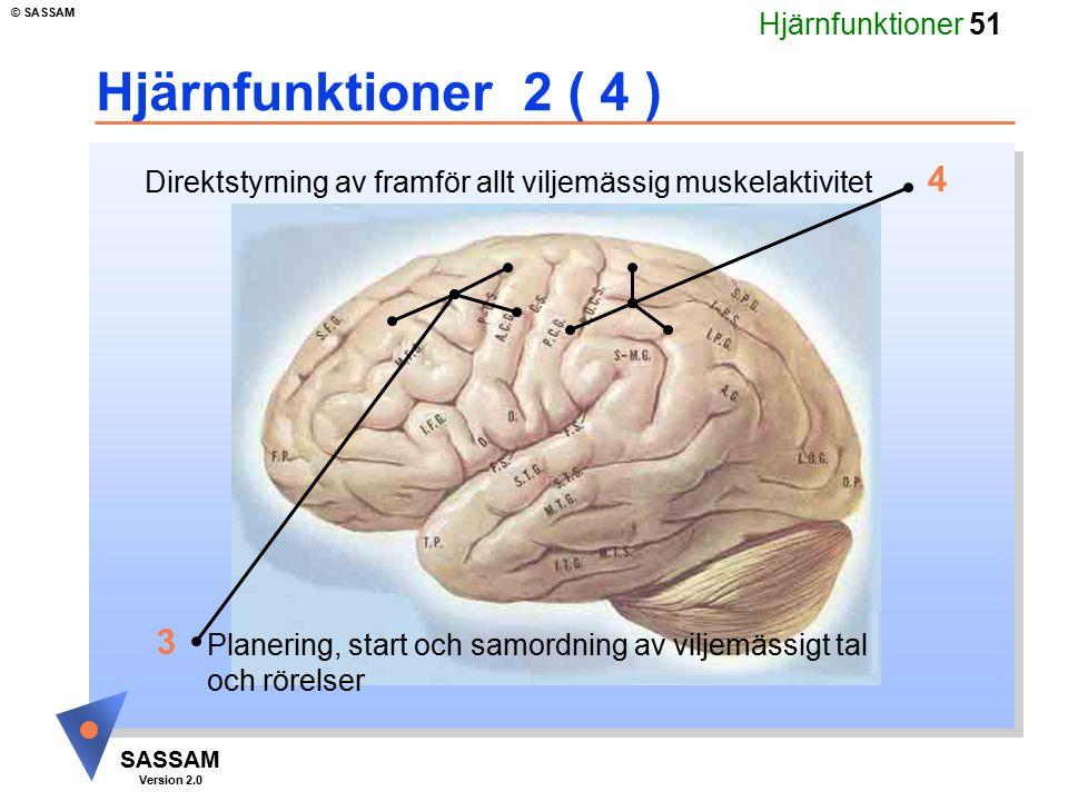 Hjärnfunktioner 2 ( 4 ) 4. Direktstyrning av framför allt viljemässig muskelaktivitet. Kommentar bild 32 (fördjupning hjärna 4):