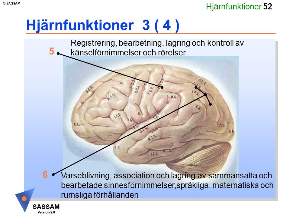 Hjärnfunktioner 3 ( 4 ) Registrering, bearbetning, lagring och kontroll av. känselförnimmelser och rörelser.