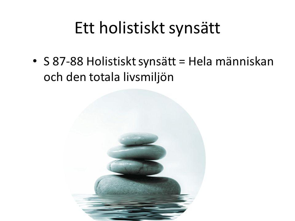 Ett holistiskt synsätt
