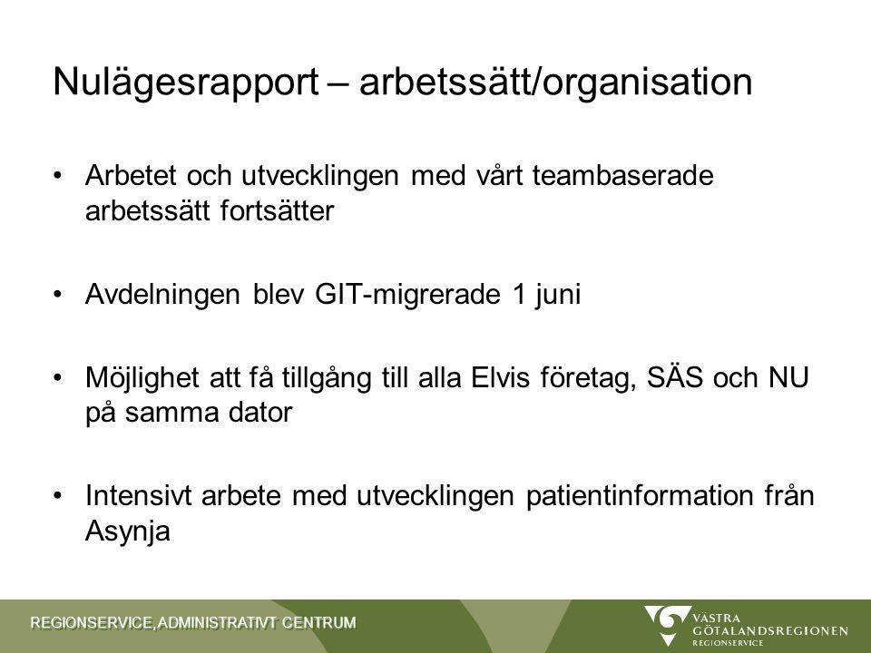 Nulägesrapport – arbetssätt/organisation