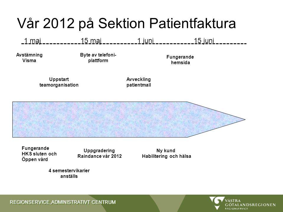 Vår 2012 på Sektion Patientfaktura