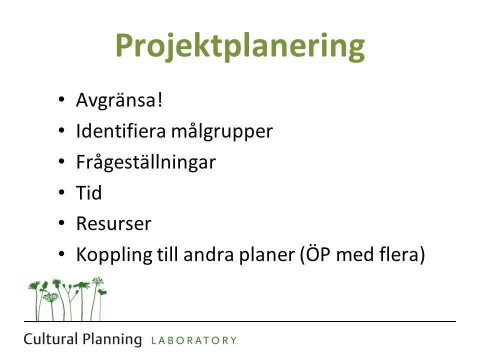 Projektplanering Avgränsa! Identifiera målgrupper Frågeställningar Tid