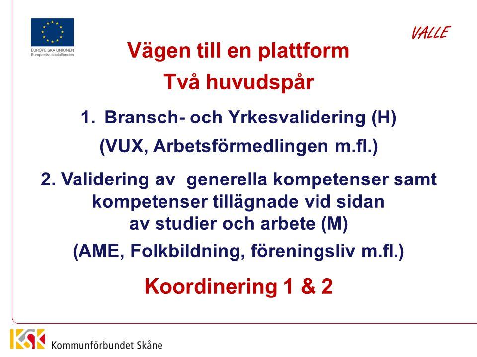 Vägen till en plattform Två huvudspår Koordinering 1 & 2