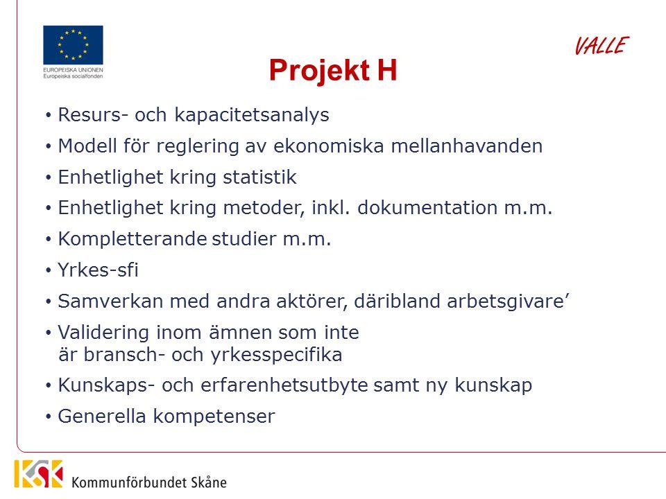Projekt H VALLE Resurs- och kapacitetsanalys