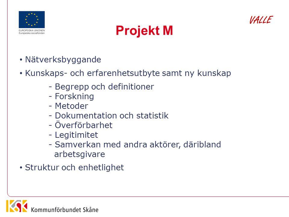 Projekt M VALLE Nätverksbyggande