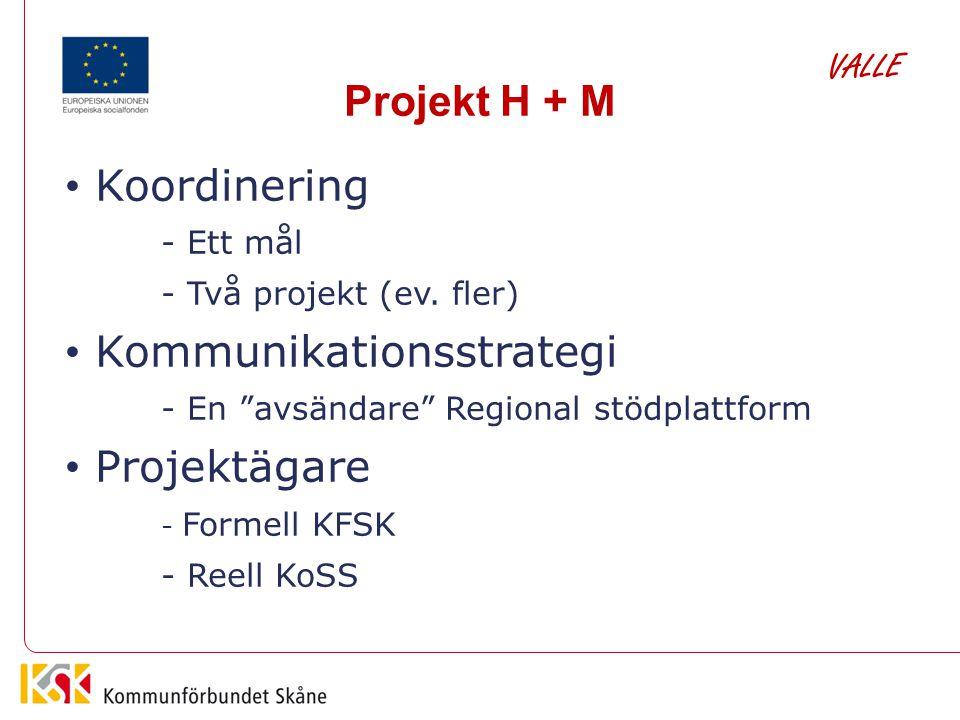 Kommunikationsstrategi Projektägare