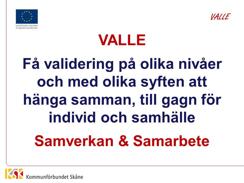 VALLE VALLE. Få validering på olika nivåer och med olika syften att hänga samman, till gagn för individ och samhälle.