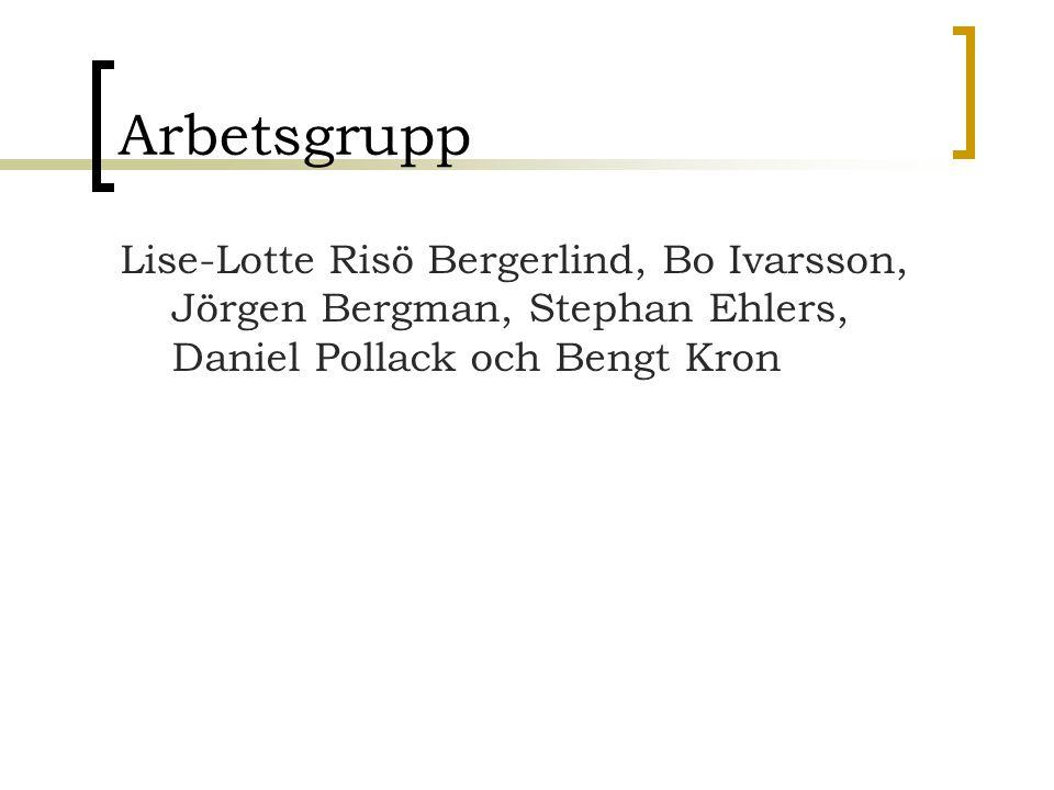 Arbetsgrupp Lise-Lotte Risö Bergerlind, Bo Ivarsson, Jörgen Bergman, Stephan Ehlers, Daniel Pollack och Bengt Kron.