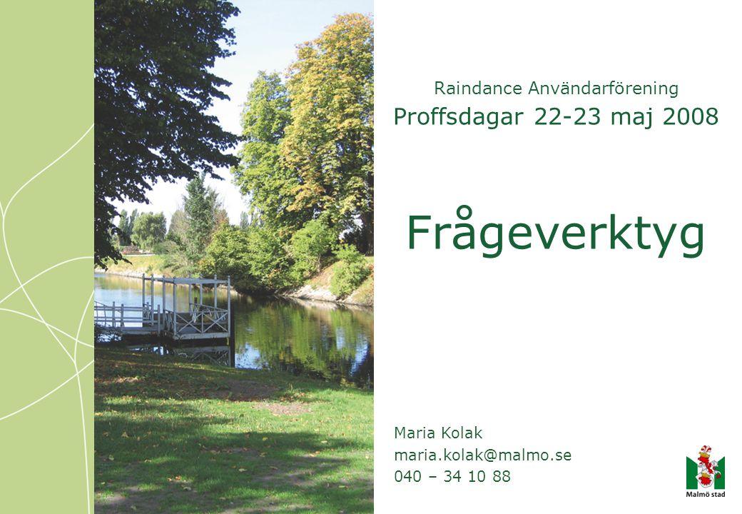 Raindance Användarförening Proffsdagar 22-23 maj 2008 Frågeverktyg