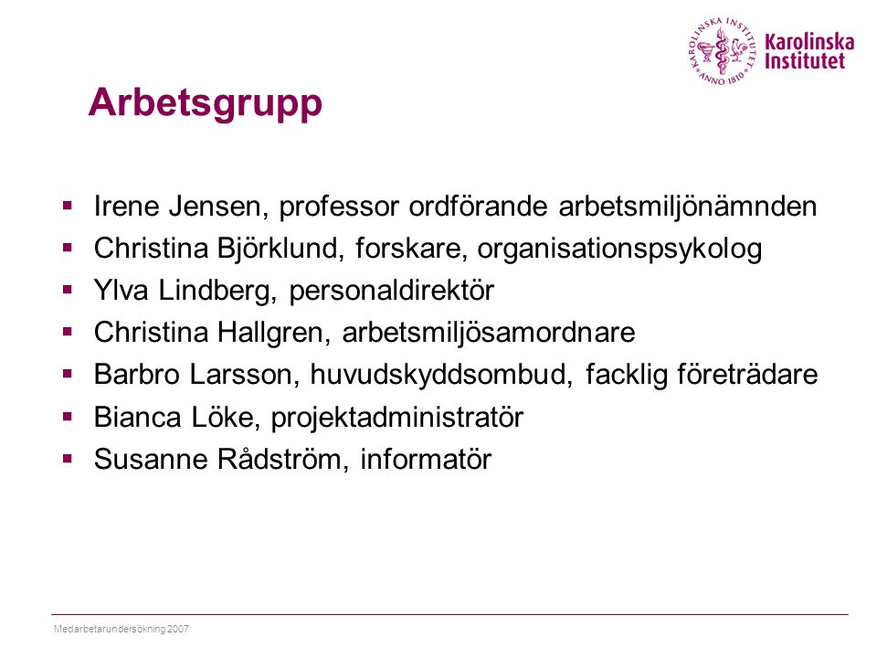Arbetsgrupp Irene Jensen, professor ordförande arbetsmiljönämnden