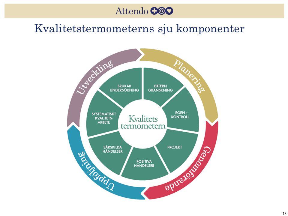 Kvalitetstermometerns sju komponenter