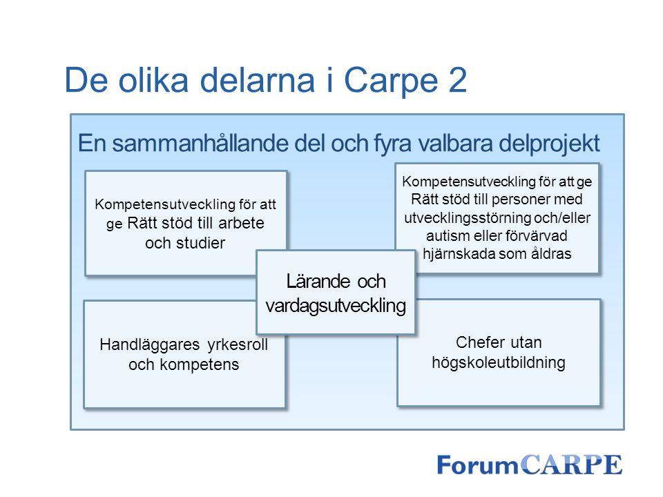 De olika delarna i Carpe 2