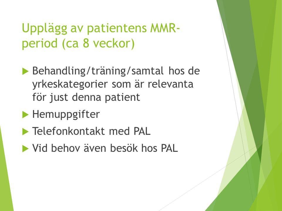 Upplägg av patientens MMR-period (ca 8 veckor)