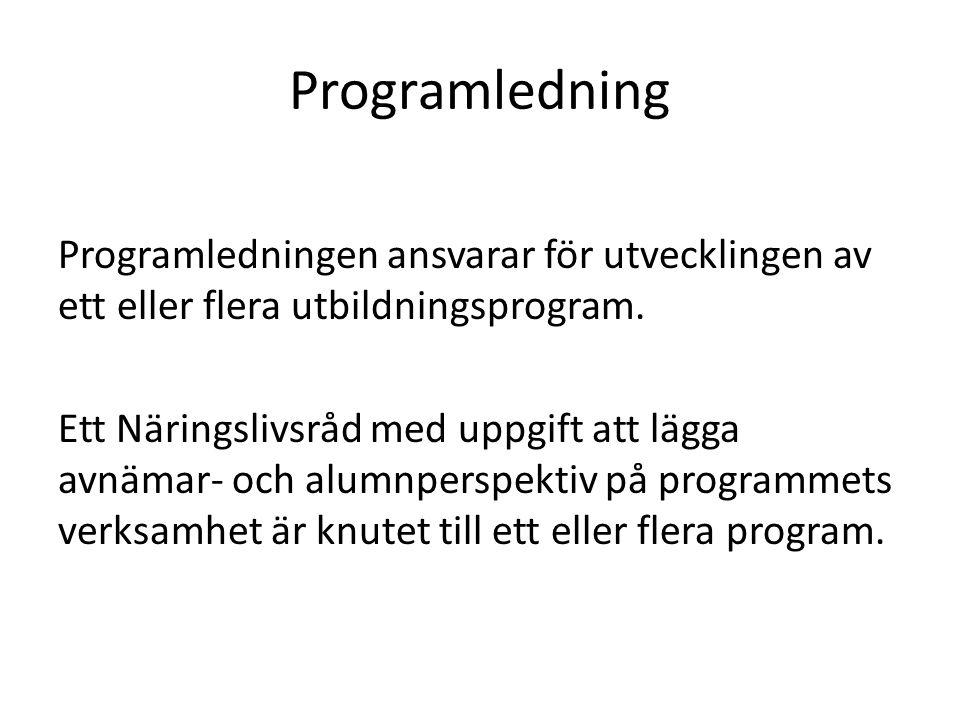Programledning
