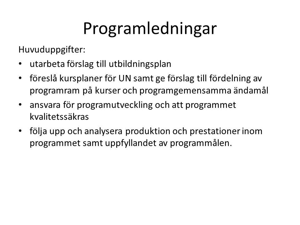 Programledningar Huvuduppgifter: utarbeta förslag till utbildningsplan