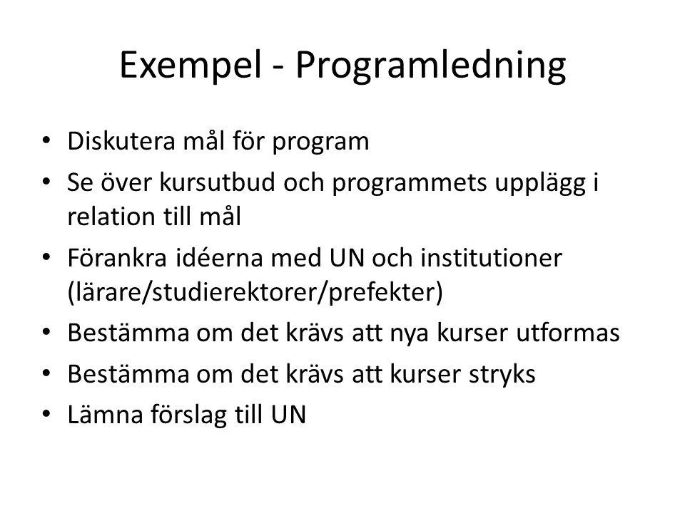 Exempel - Programledning