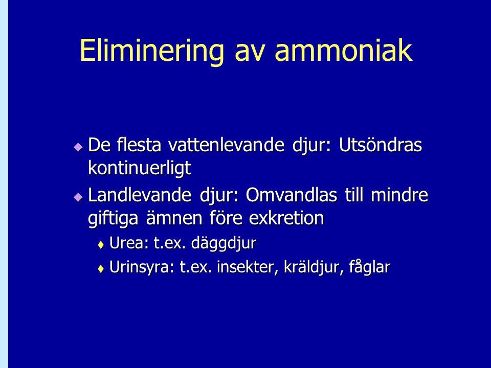 Eliminering av ammoniak
