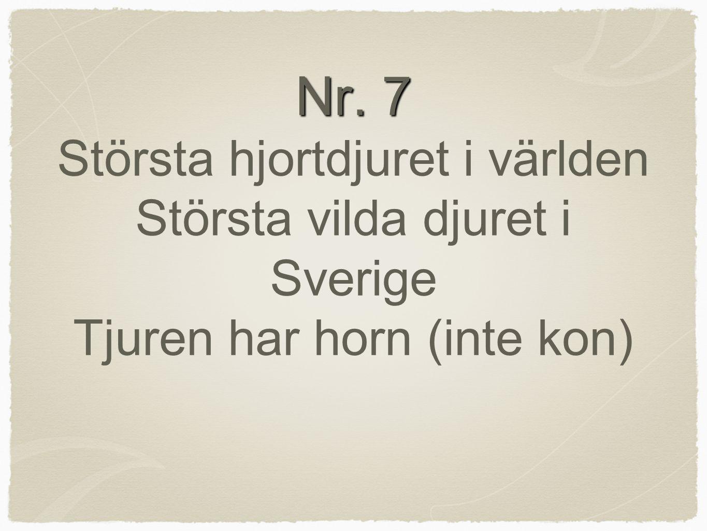 Nr. 7 Största hjortdjuret i världen Största vilda djuret i Sverige Tjuren har horn (inte kon)