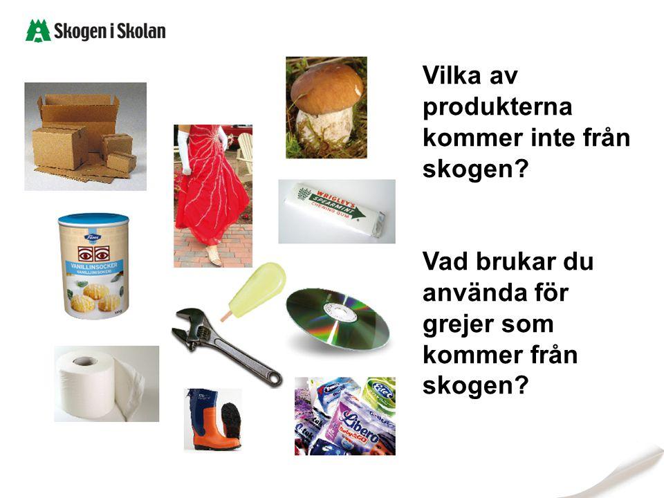 Vilka av produkterna kommer inte från skogen Vad brukar du använda för grejer som kommer från