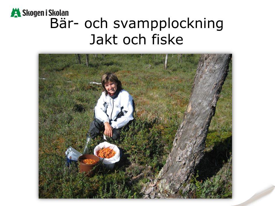 Bär- och svampplockning Jakt och fiske