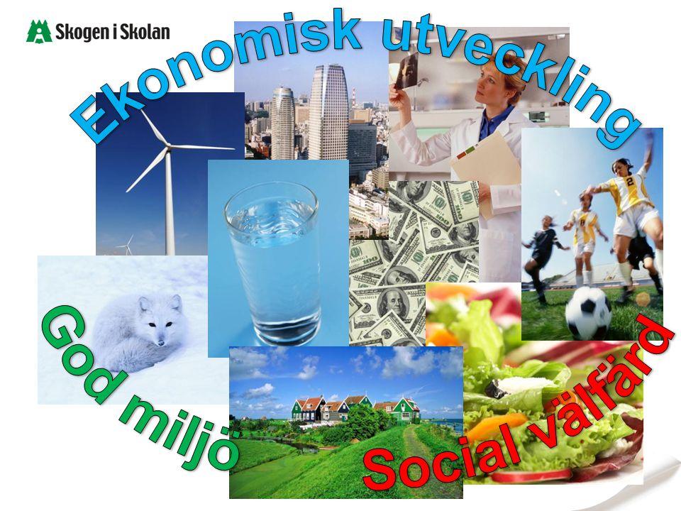 God miljö Social välfärd