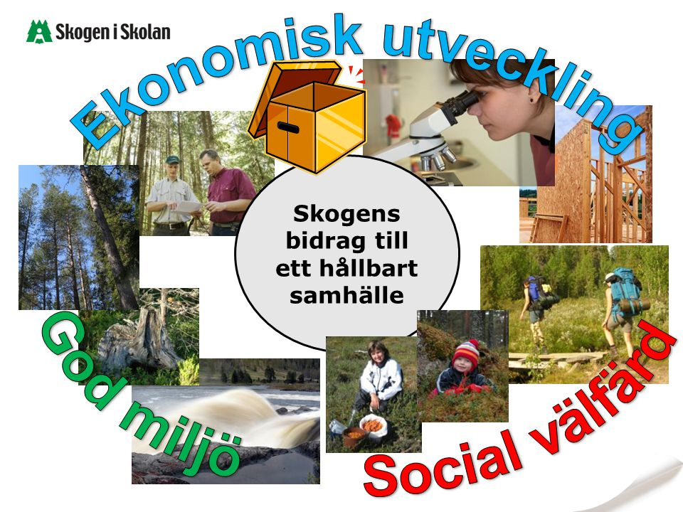 God miljö Social välfärd Skogens bidrag till ett hållbart samhälle