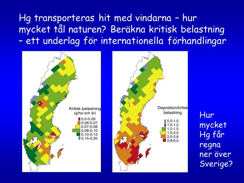 Hg transporteras hit med vindarna – hur mycket tål naturen