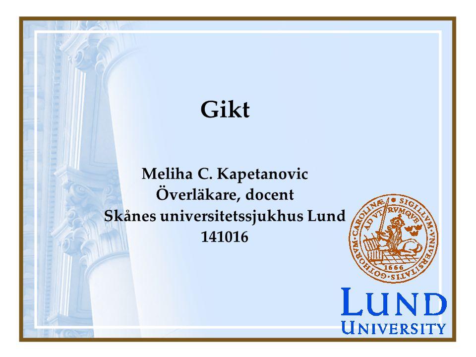 Skånes universitetssjukhus Lund