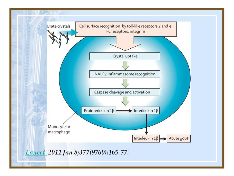Lancet. 2011 Jan 8;377(9760):165-77.
