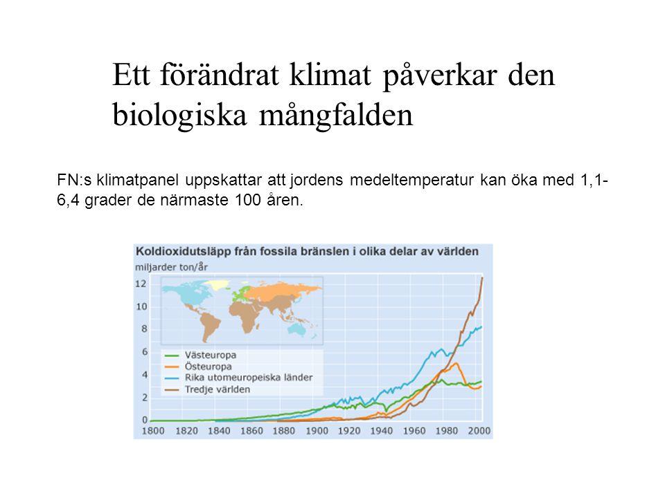 Ett förändrat klimat påverkar den biologiska mångfalden