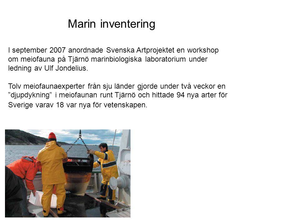 Marin inventering