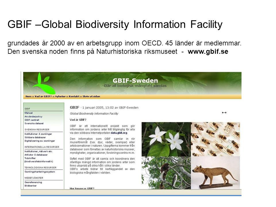 GBIF –Global Biodiversity Information Facility
