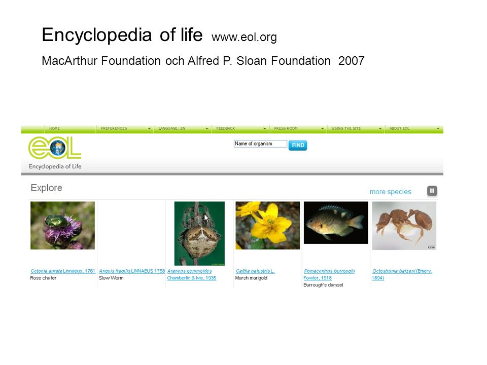 Encyclopedia of life www.eol.org
