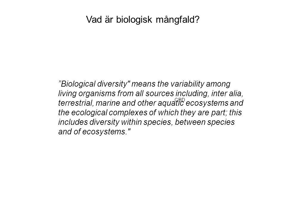 Vad är biologisk mångfald