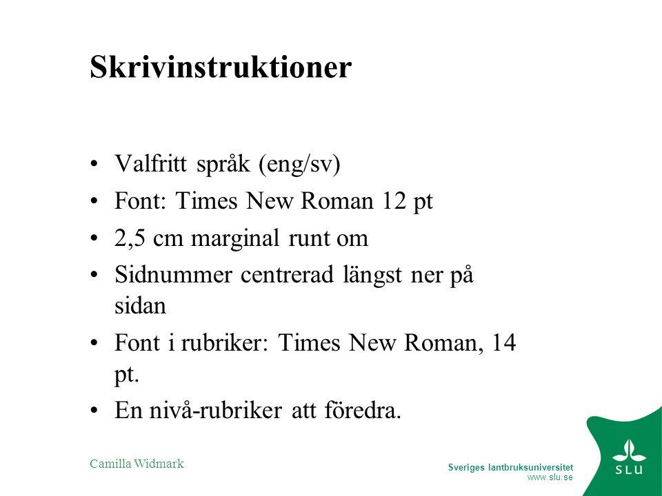 Skrivinstruktioner Valfritt språk (eng/sv) Font: Times New Roman 12 pt