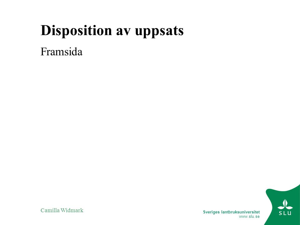 Disposition av uppsats