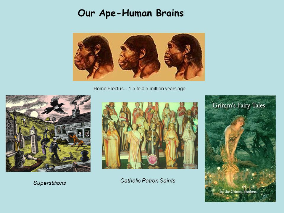 Our Ape-Human Brains Catholic Patron Saints Superstitions