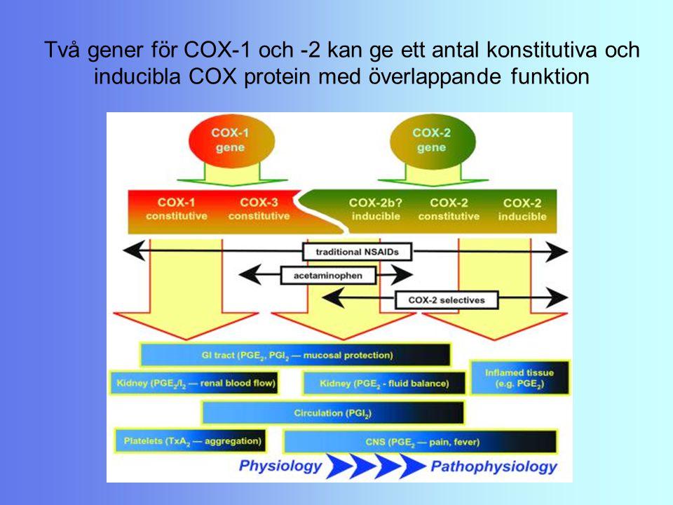 Två gener för COX-1 och -2 kan ge ett antal konstitutiva och inducibla COX protein med överlappande funktion