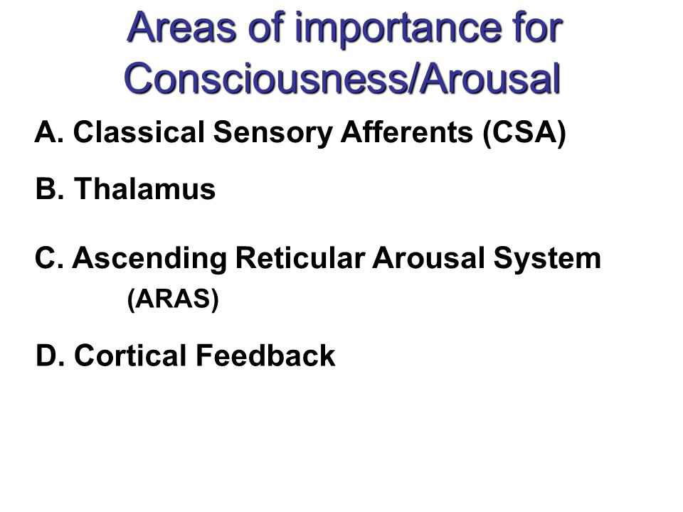 Areas of importance for Consciousness/Arousal
