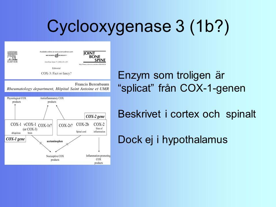 Cyclooxygenase 3 (1b ) Enzym som troligen är splicat från COX-1-genen Beskrivet i cortex och spinalt Dock ej i hypothalamus.