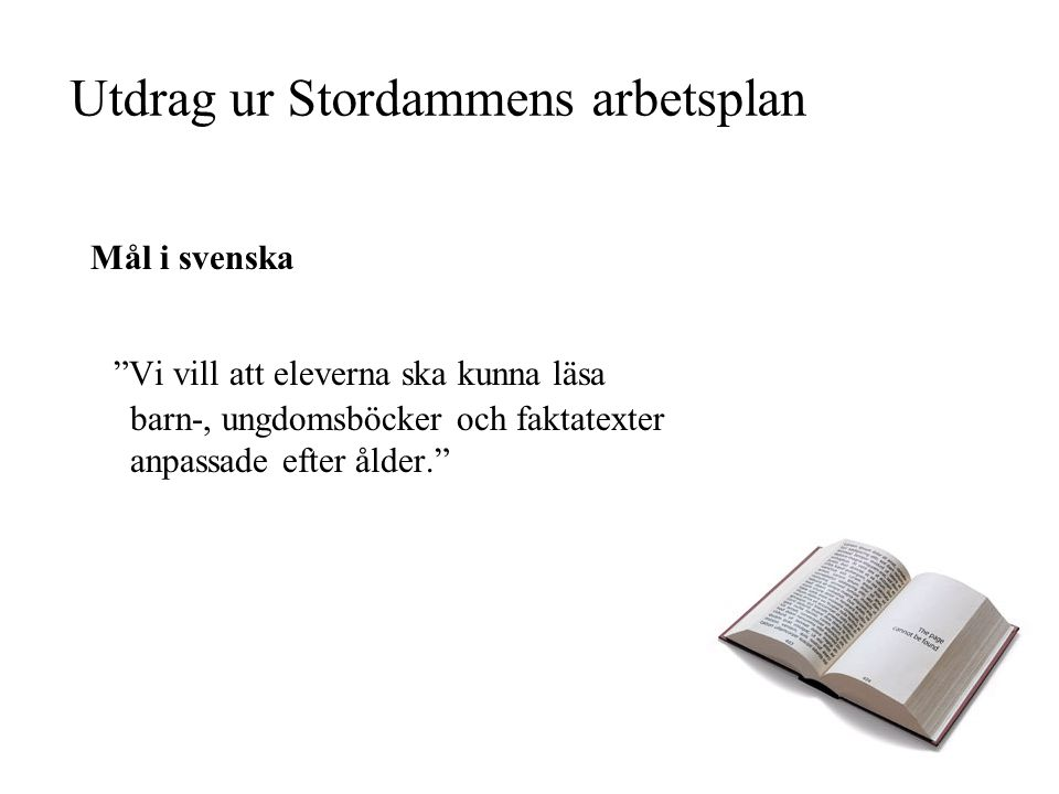 Utdrag ur Stordammens arbetsplan