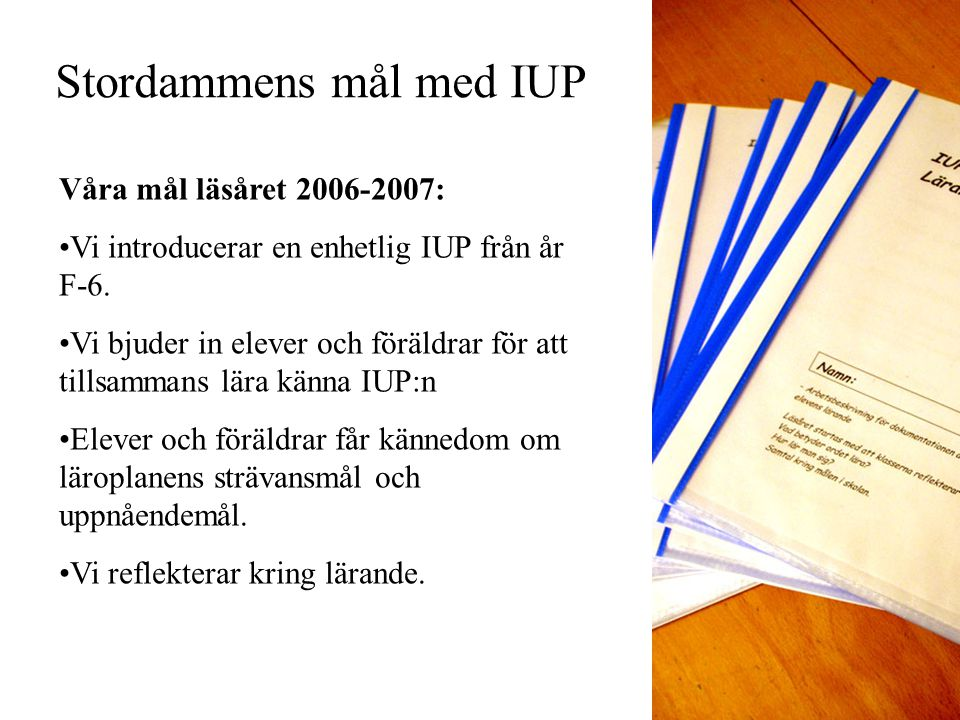 Stordammens mål med IUP